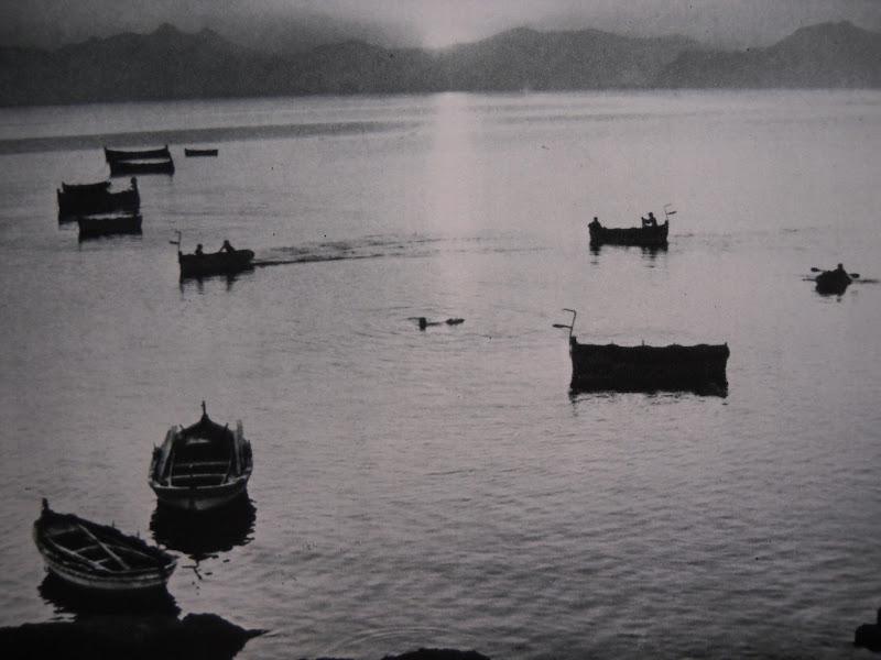Lesercitazione per pescare in deposito in linea
