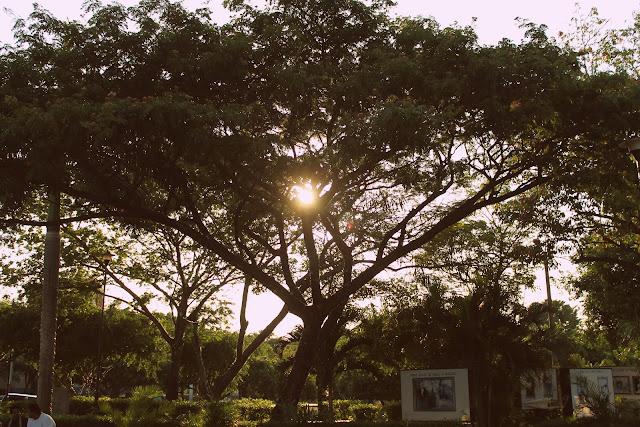 La tierra de mi abuela, Nicaragua- Fotos
