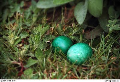 Uova pasquali in mezzo al prato
