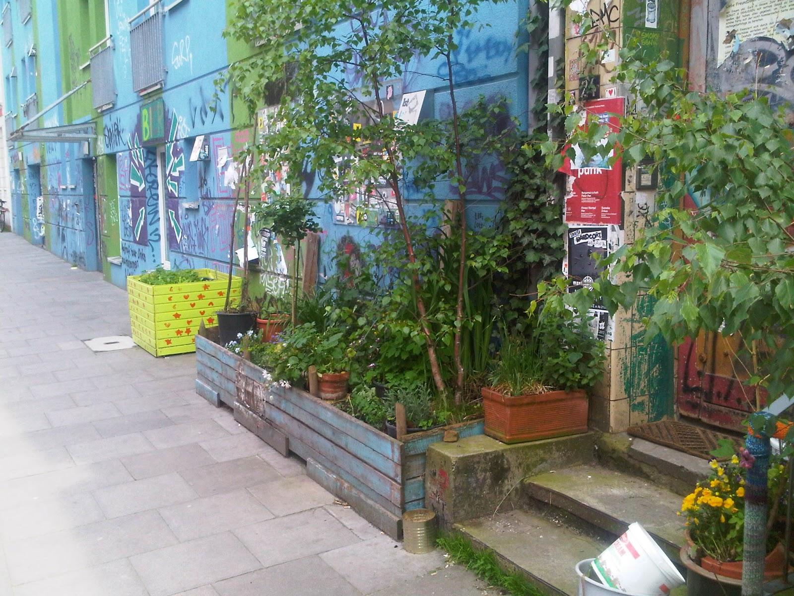 Bürgersteig mit bepflanzten Kästen Garten vor Wohngebäude. Kisten, Eimer und Wannen werden zum Garten mit Kräutern, Bäumen und auch Unkraut.
