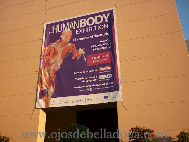Palacio de Congresos de Marbella, The Human Body Exhibition