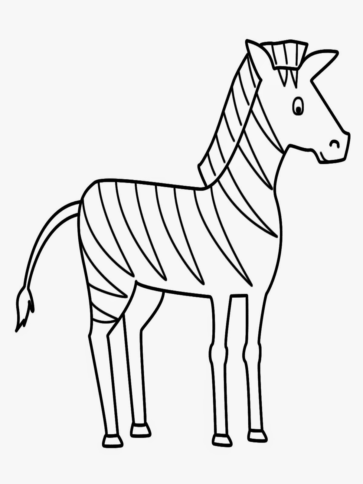 Zebra Animals Coloring Pages Printable Kids