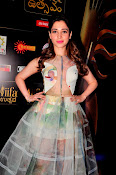 Tamanna At South IIFA Utsav-thumbnail-13