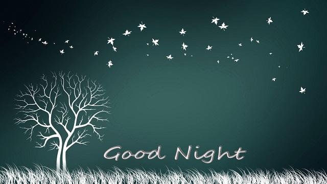 Hình ảnh chúc ngủ ngon đẹp và lãng mạn