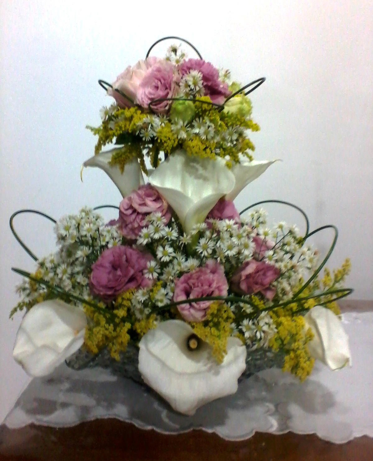 flores jardim camburi : flores jardim camburi:Divina Flor!: Flores, Flores, Flores!