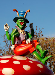 carnival cricket