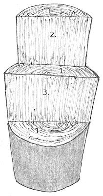 Tekening van kopshout, tangentiale doorsnede, radiaalhout