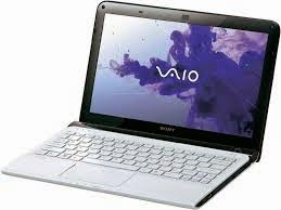 http://driverdownloadfree.blogspot.com/2014/03/free-driver-download-sony-vaio-SVE1111M1EW-for-windows-7-64bit.html