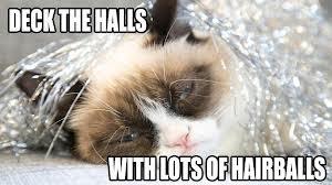 hairballs