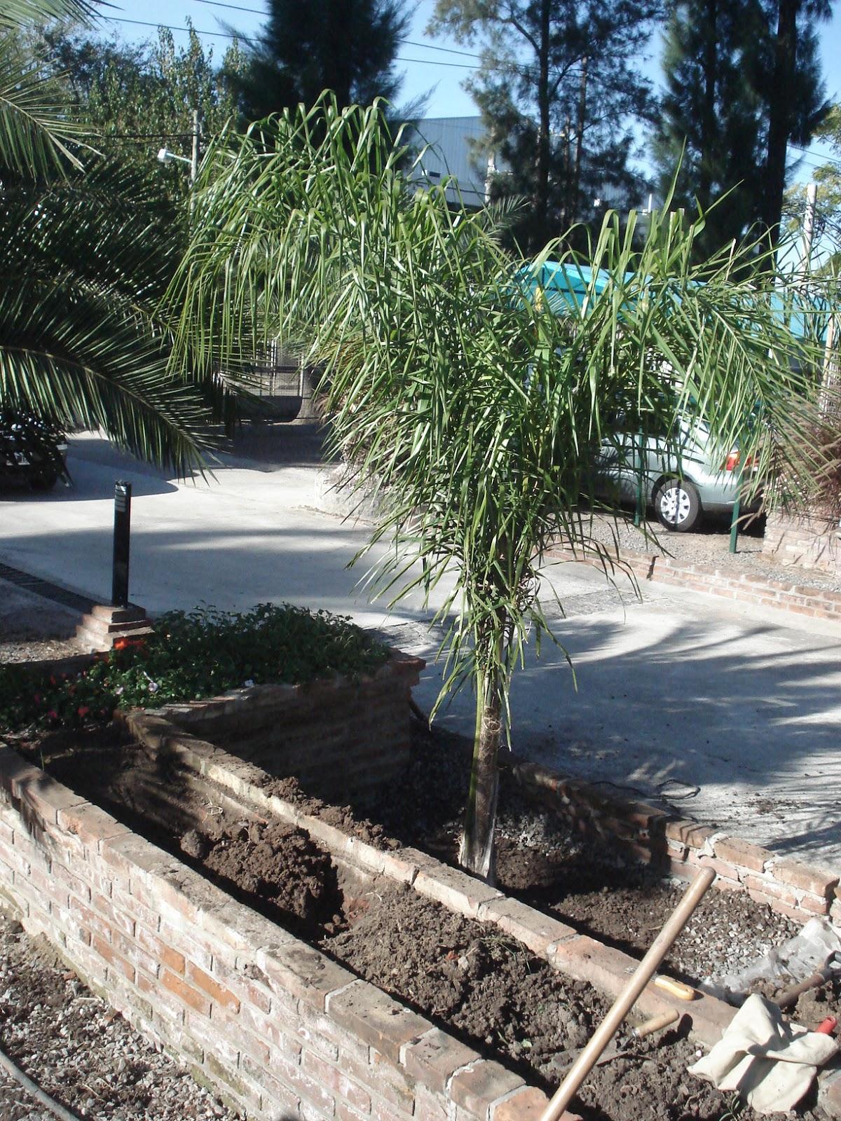 Reverdir Jardineria Y Paisajismo Junio 2013
