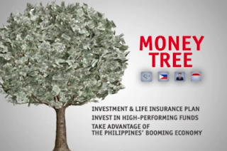 PAMI Money Tree