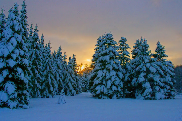 Sagadi loojang lumi sunset Kalev Vask