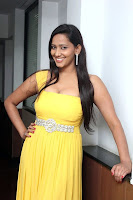sanchana singh  fuction stills
