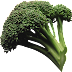 Brokoli Png indir broccoli png download