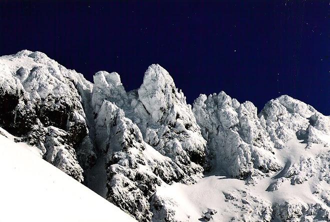 Les hauts enneigés de l'Alpe du Grand Serre en Isère