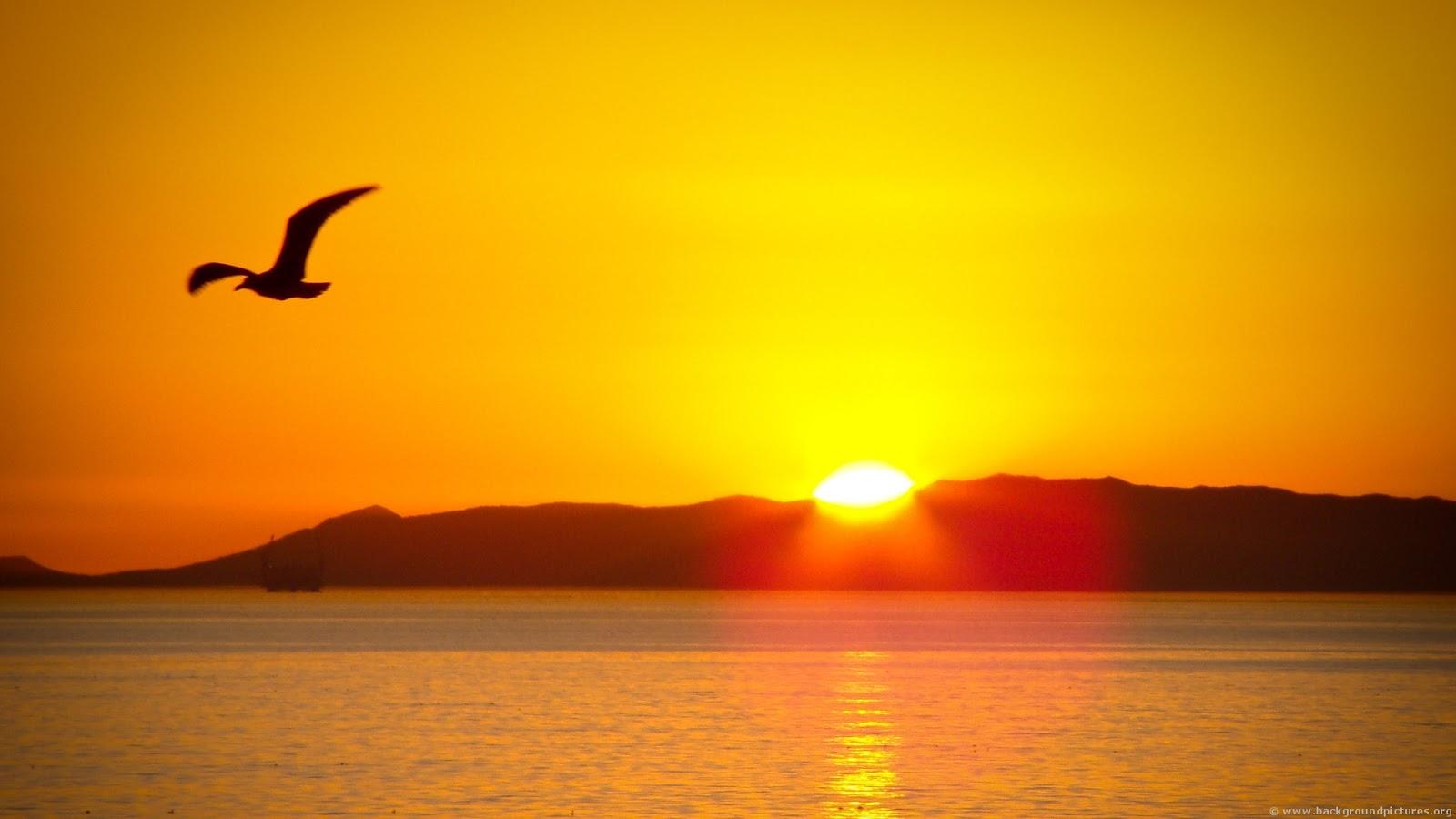 sun risese