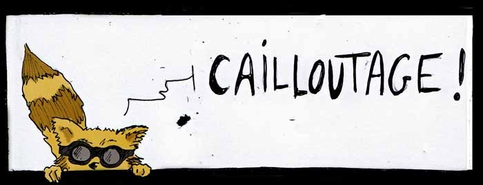 Cailloutage