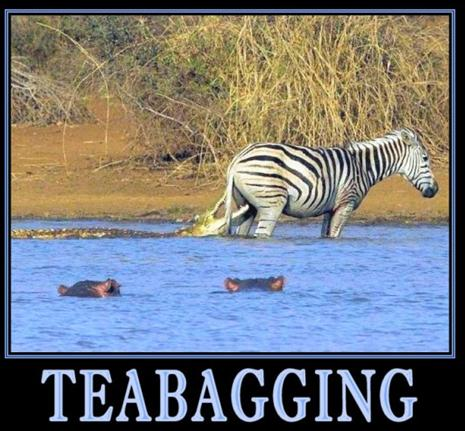 If Mark Halperin had called the President a Teabagger, would he still be ...