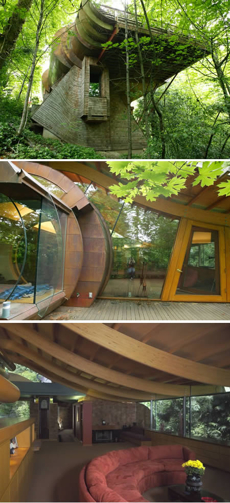 Amazing Tree Houses Natural Beauty