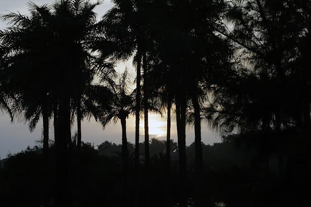 Sunset in Kotu/Gambia