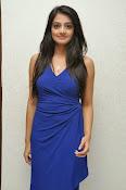 Nikitha Narayan glam pics in blue-thumbnail-16