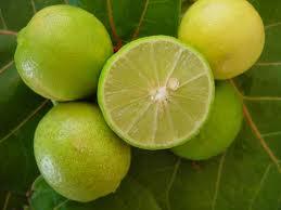 Herbs-Treat and Taste: MEETHAY FRUIT