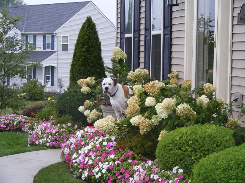 Front yard landscaping ideas dream house experience for Front yard flower garden ideas