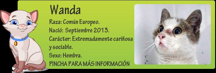 http://mirada-animal-toledo.blogspot.com.es/2014/02/esta-chiquitina-preciosa-la-recogimos.html
