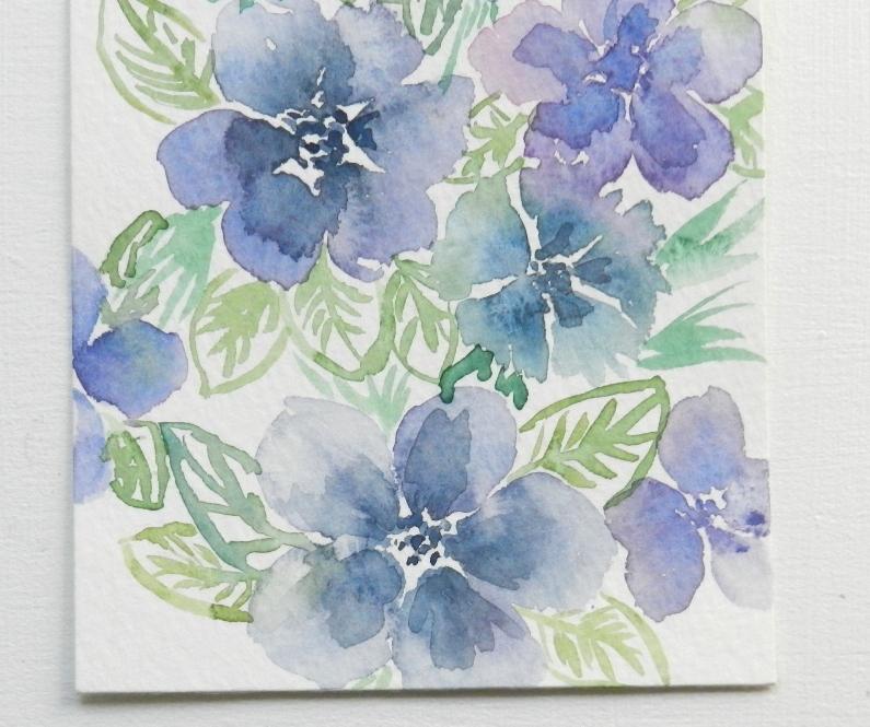 Flores azules y violetas vid Macro Pétal Stock de Foto gratis