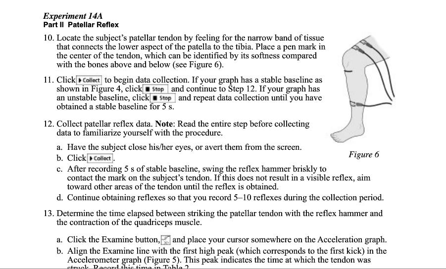 Fantástico The Anatomy And Physiology Place Ideas - Anatomía de Las ...