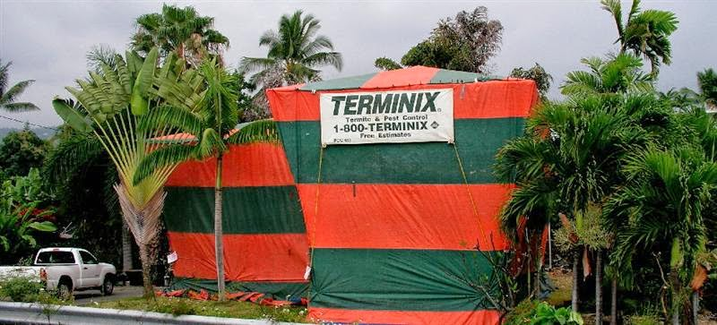 Fumigation Tents of Florida & Report from the Florida Zone: May 2015
