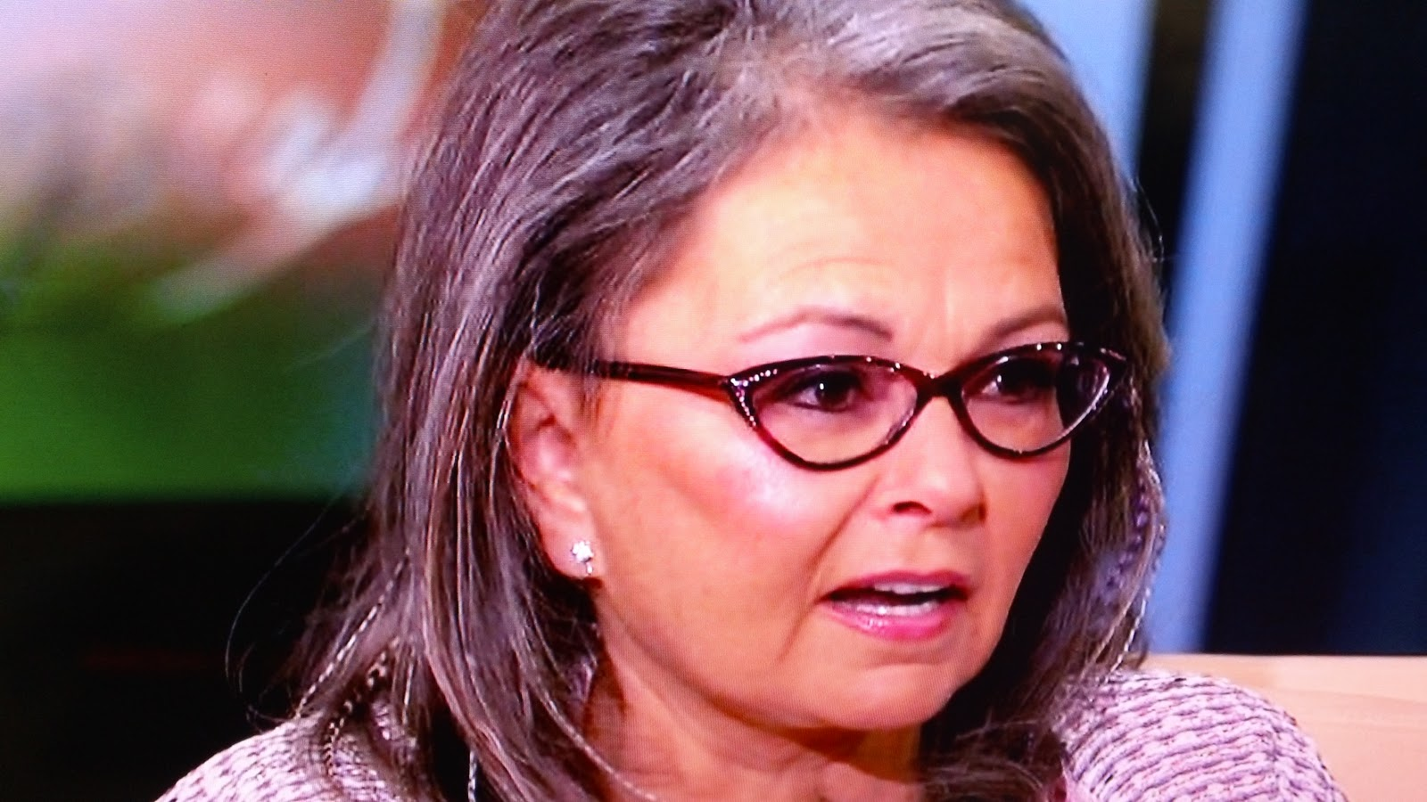 Roseanne Barr Gets More Nutty With a New Reality Show about Life on ...