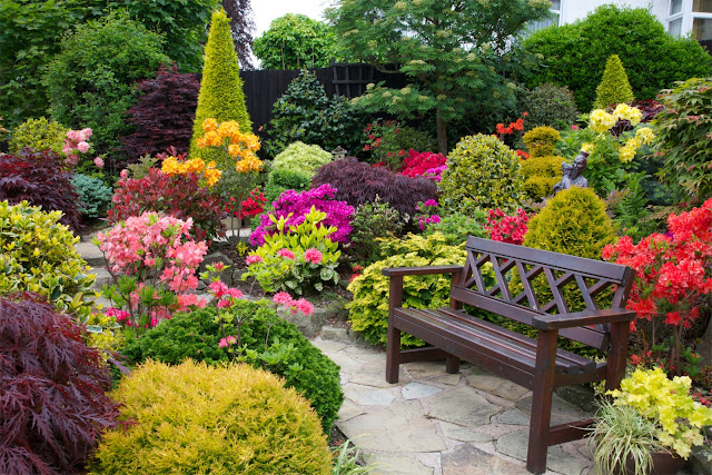 Garden seat amongst the azalea flowers