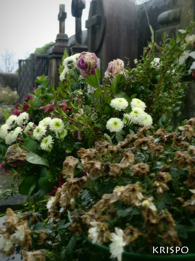 flores marchitas en el cementerio