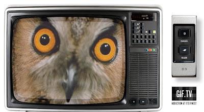 écran de télévision