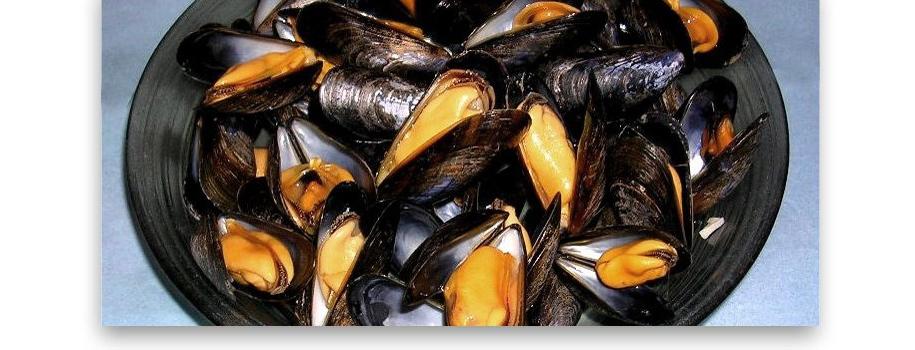 Artes de Pesca: MOLUSCOS BIVALVOS
