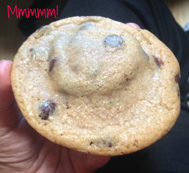 Chocolate Chip Oreo Cookie