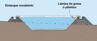 Piscicultura construcciones de estanque for Fertilizacion de estanques piscicolas