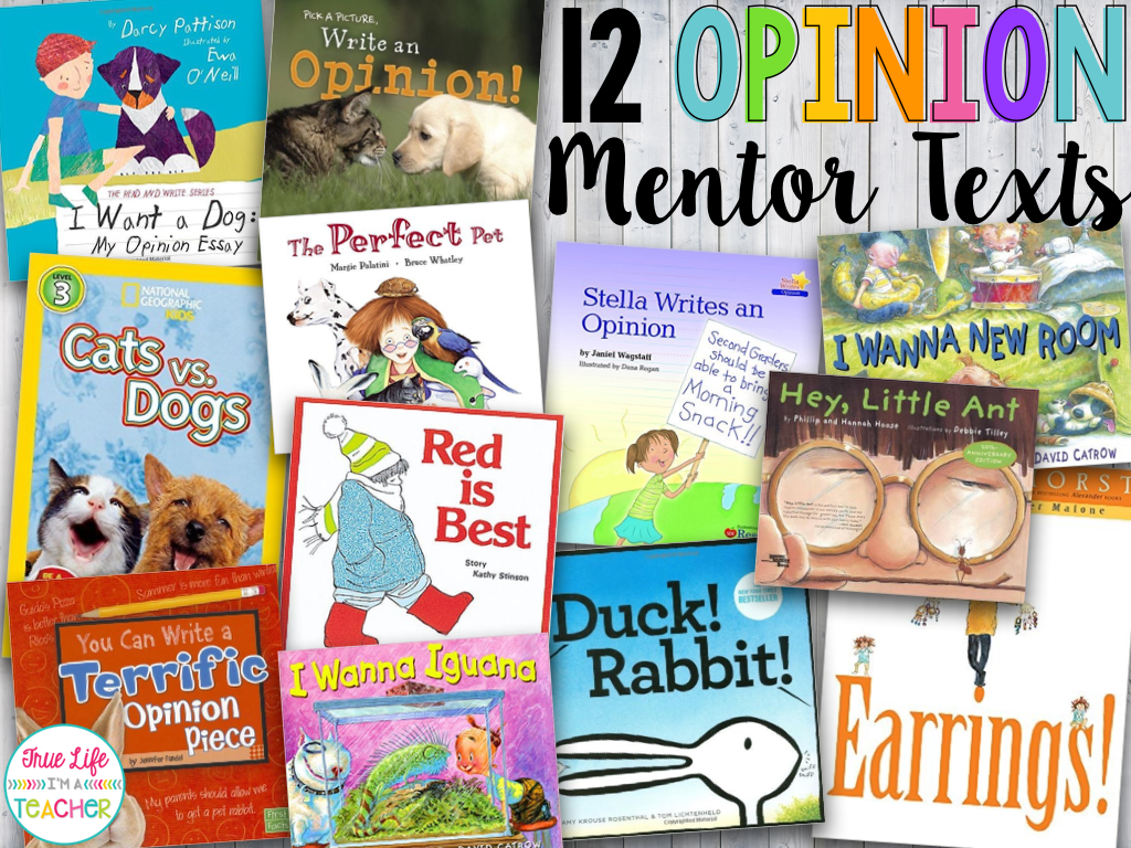 a personal opinion on teachers as mentors Mentor texts to support the writing workshop  my teacher for president kay winters  personal narratives/memoir/fiction.
