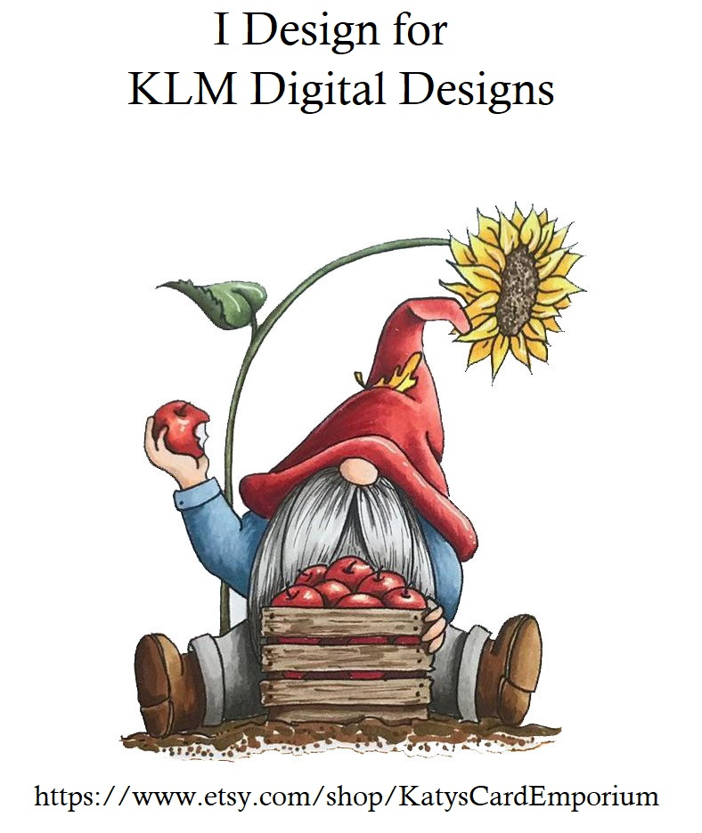 KLM Digital Designs DT Member
