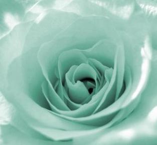 color verde menta mint - photo #3