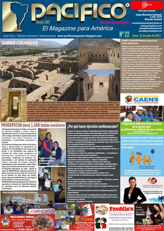 Revista Pacífico Nº 22 Arqueología