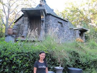 Wizarding World of Harry Potter Hagrid's Hut