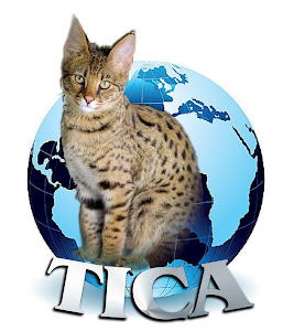 TICA Registered Cattery