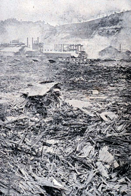 Disasters and Genealogy