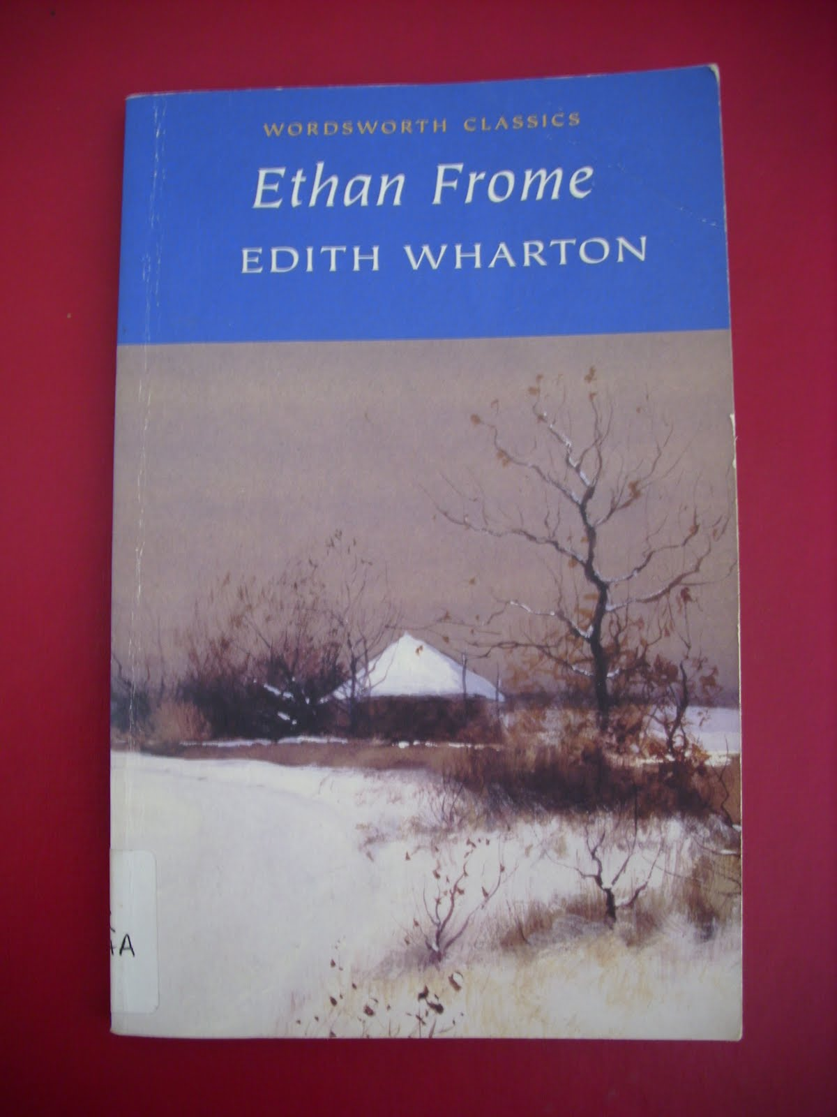 an analysis of edith whartons ethan frome Ethan frome is a book published in 1911 by the pulitzer prize-winning american author edith wharton it is set in the fictitious town of starkfield, massachusetts.