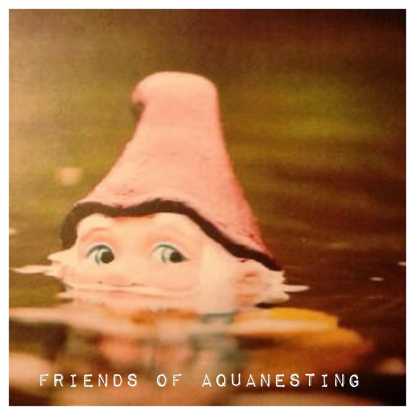 Novembre 2015: Friends of Aquanesting