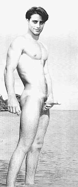 Young male hollywood actors nude consider, that