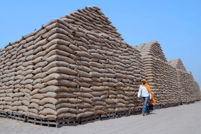 India: wheat state reserves is 3 times higher than normal
