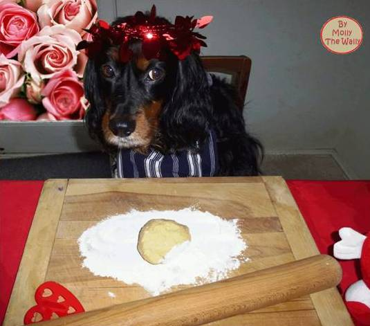 Molly The Wally says, make a start and show some art on my heart shaped cookies.4